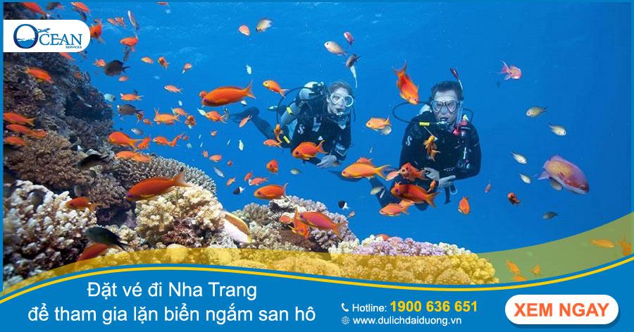 Tư vấn địa chỉ đặt vé đi Nha Trang trên toàn quốc