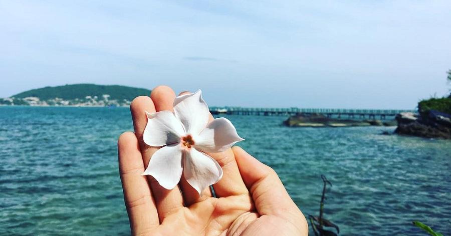 Kinh nghiệm du lịch Phú Quốc tự túc từ A đến Z – Phần 3