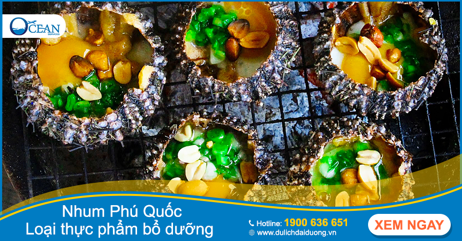 Nhum Phú Quốc – loại thực phẩm bổ dưỡng dành cho phái mạnh