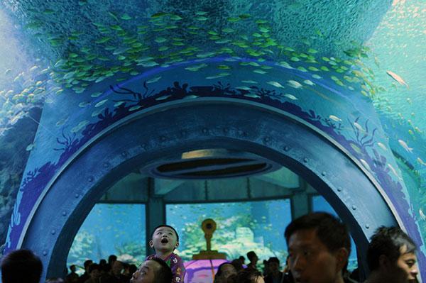 Top 10 địa điểm du lịch lý tưởng tại Nha Trang 2015 phần 2