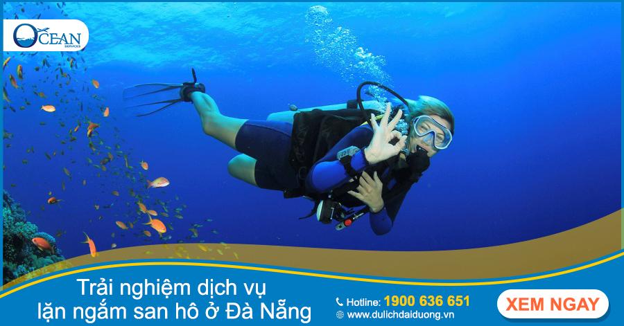 Trải nghiệm dịch vụ lặn ngắm san hô ở Đà Nẵng